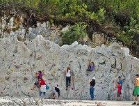 TriassicPark-Kletterwand.jpeg